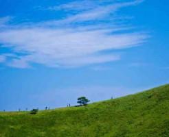 空と緑の大地