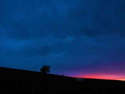 夕陽の丘風景